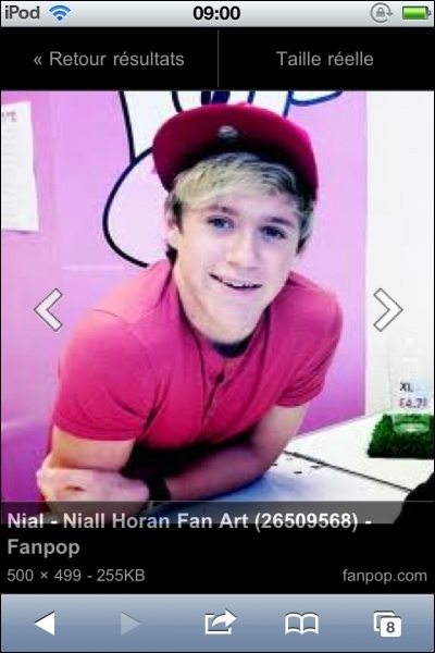 Quel est le nom complet de Niall ?