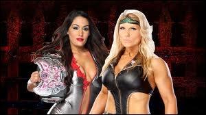 Quelle est la vainqueure entre Layla (qui remplace Beth Phoenix) et Nikki Bella dans un match simple pour le Divas championship ?