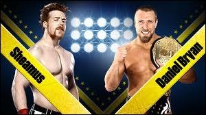 Quel est le vainqueur entre Daniel Bryan et Sheamus dans un match simple pour le World Heavywheight championship ?