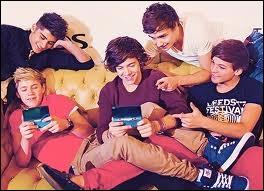 Niall est très proche d'un des membres des One Direction , de qui ?