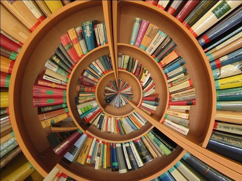 Il est épris, passionné de romans. Quel participe passé synonyme pouvez-vous utiliser ?