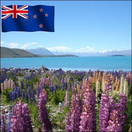 Pays océanien, territoire des maori ... .