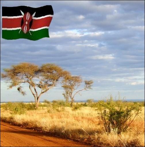 Le nom de ce pays d'Afrique, lui vient de son plus haut sommet signifiant   montagne de l'autruche  ... .