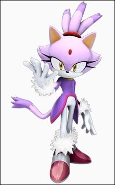 Une amie de Sonic. C'est...