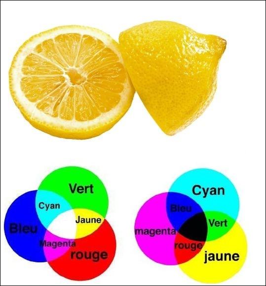 Pourquoi un citron apparaît-il jaune ?
