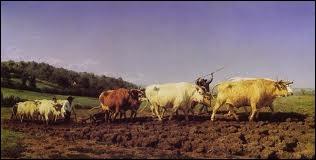 Quel(le) peintre spécialisé(e) dans les représentations animalières né(e) à Bordeaux en 1822 est l'auteur de la toile  Labourage nivernais  ?