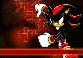 Pour Sonic, qui est-il ?