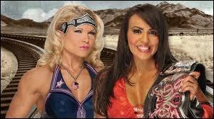 Quelle est la gagnante entre Layla contre Beth Phoenix dans un match simple pour le Divas championship ?