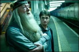 A propos de qui, Dumbledore dit-il cette phrase :  Il faut beaucoup de bravoure pour faire face à ses ennemis mais il n'en faut pas moins pour affronter ses amis . ?