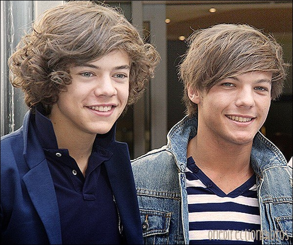 Comment appelle-t-on la bromance entre Harry et Louis ?