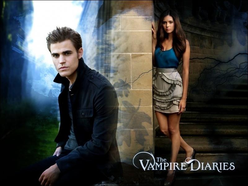 Dans quel endroit, Elena et Stefan se sont-ils rencontrés ?
