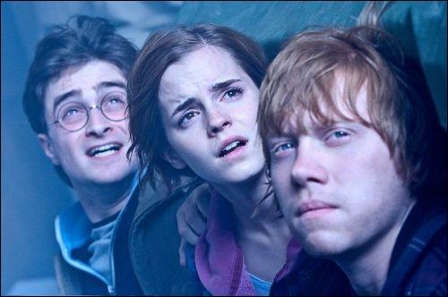Quels sont les noms de ses partenaires de cinéma dans  Harry Potter  ?