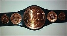 Qui ont été  WWE Tag Team champions  avant Kane et Daniel Bryan ?