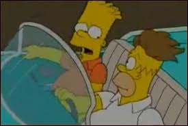 Dans l'épisode  Future Drama   , quelle est l'origine de la magnifique chevelure d'Homer ?