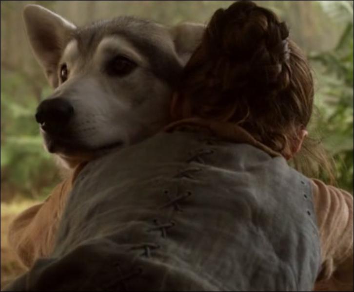 Dans le premier épisode, les enfants Stark découvrent une louve morte qui vient de mettre au monde 6 louveteaux. Chaque enfant en récupère donc un pour lui. Comment s'appelle la louve d'Arya ?