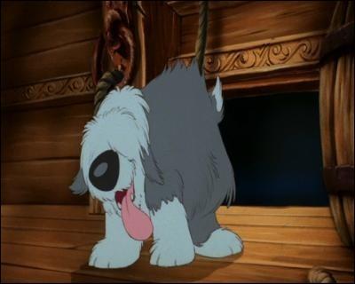 De qui Max est-il le chien ?