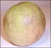 Quel est l'autre nom de ce fruit antillais appelé caïmite ?