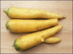 Reconnaissez-vous ces légumes ?
