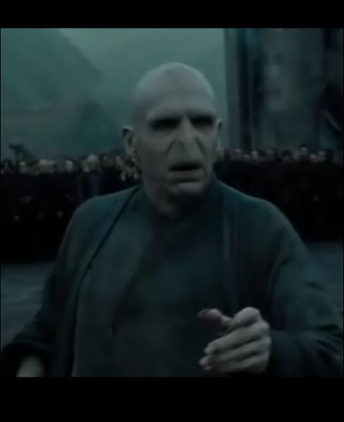 R. D. L. M. (partie 2), lorsque Harry, Ron et Hermione se trouvent près de l'endroit où Severus Rogue est décédé, on entend Voldemort. Que dit-il ?