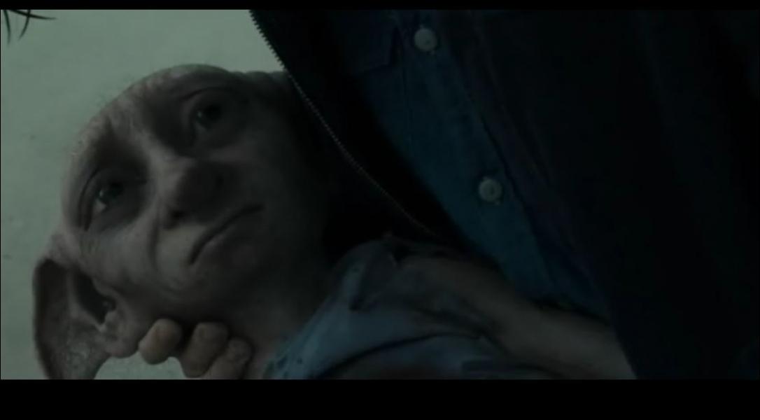 Dans quelle partie Harry, Ron et Hermione revoient-ils Dobby, l'elfe de maison ?