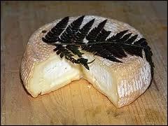 Quel est ce fromage de brebis au lait pasteurisé, recouvert d'une feuille de fougère ?