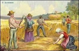 """On pense à une origine anglaise pour le mot camping, en réalité il vient du latin et, de l'expression """"faire campos"""" au XIXe siècle ? Que signifie-t-elle ?"""