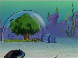 Sandy habite sous un dôme, mais qui est Sandy exactement ?