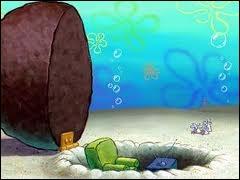 Qui vit sous un rocher ?