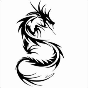 Qui est Petit Dragon ?