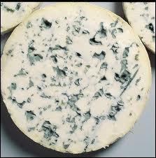 Quel est ce fromage des Monts du Forez ?