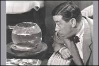 Quel est le titre ce film où joue Fernandel en 1956 ?