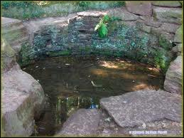 Que faut-il pour avoir la vie éternelle avec la fontaine de Jouvence ?