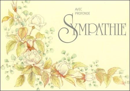 Racines grecques et latines : Que signifie la racine « -pathie », que l'on retrouve par exemple dans le mot « sympathie ».