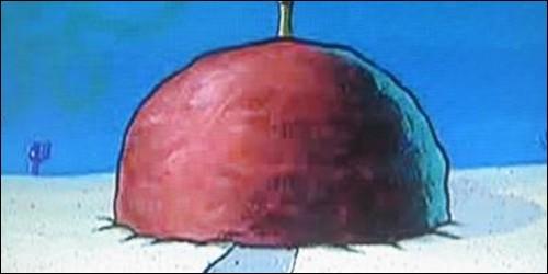 De quoi est fait l'intérieur de la maison de Patrick ?
