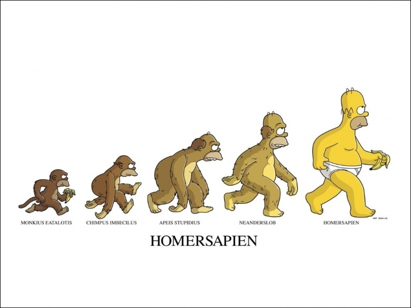 Le comportement d'Homer est parfois si bizarre que les paléoanthropologues se sont demandé s'il ne serait pas issu d'une nouvelle lignée d'hominidés inconnus jusqu'alors :