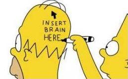 Le cerveau d'Homer Simpson