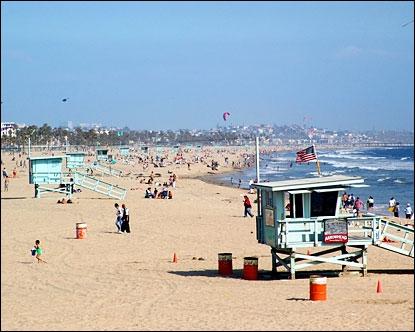 Que ne retrouve-t-on pas à Venice Beach ?