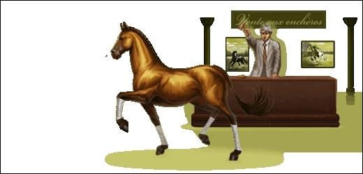 Quel est le prix minimum pour la vente d'un cheval ?