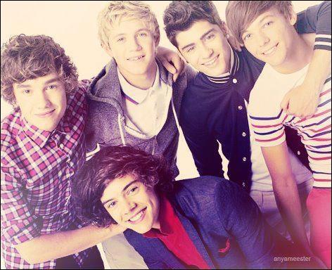Qui a dit  Harry c'est un peu le bébé du groupe  ?