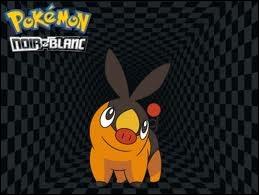 Comment est le logo de Pokémon ( le plus souvent ) ?