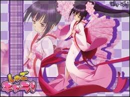 Comment s'appelle le Chara Nari entre Nadeshiko et Temari ?