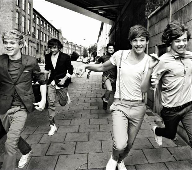 Qui est le meilleur ami de Harry au sein du groupe ?