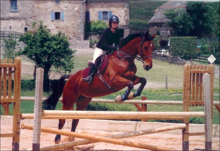 Lors d'un saut, le cheval se réceptionne sur :