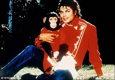 Dans le clip  Jam , combien de centimètres séparent Michael Jordan et Michael ?