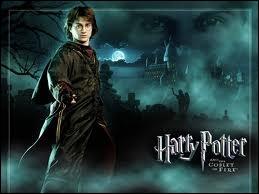 Pourquoi Voldemort s'est-il effondré ? ( Par quelle ''force'' ) ?