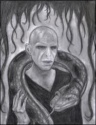 Qui a tué Nagini, le serpent de Voldemort ?