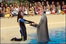 À quel endroit ne peut-on plus voir d'animaux en date du 15 juin 2012 ?