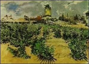 Eprouvons les senteurs florales sous un ciel bleu lavande. Ne résistons pas aux douceurs du miel et des papalines. Grimpons à Fontvieille pour y voir le moulin de Ribet. Qui a peint ce tableau ?