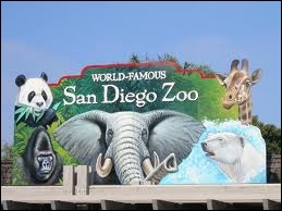 Qu'est-ce qui est faux sur le zoo de San Diego ?
