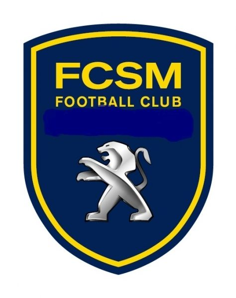 Logos de football : ligue 1 (2012-2013)